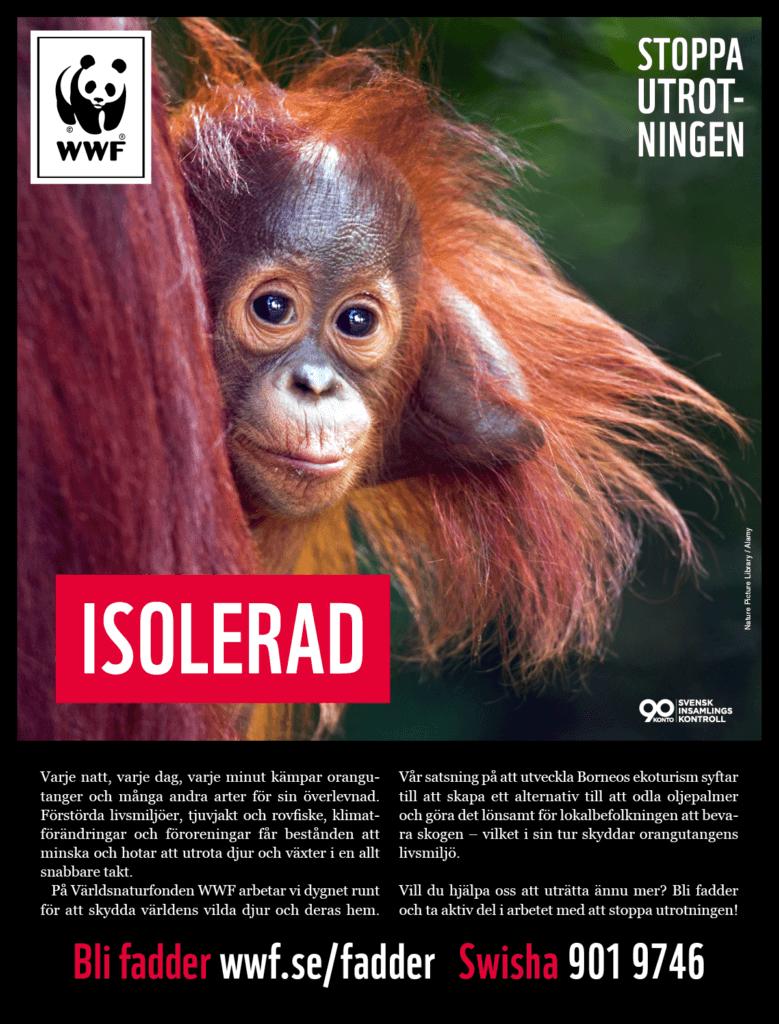 Frilans copywriter Ola Gatby för WWF